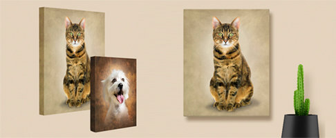 Cat Portrait on gallery wrapped canvas