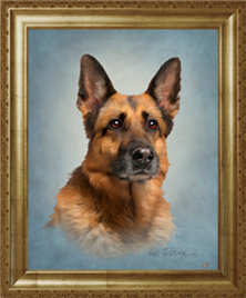 Dog Portrait in a frame